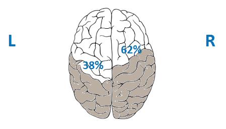 hersenen%20resultaten%20-%2038%25%20links